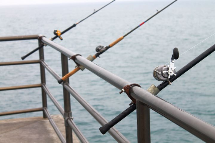 Hey the rod holders are cheating for Pier fishing rod holder